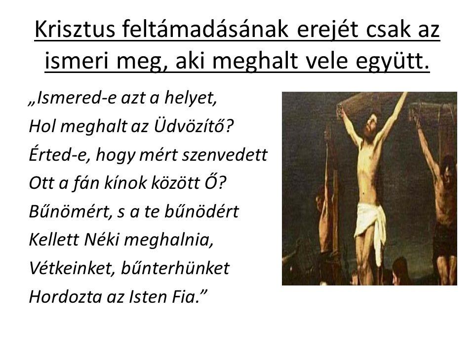 Krisztus feltámadásának erejét csak az ismeri meg, aki meghalt vele együtt.