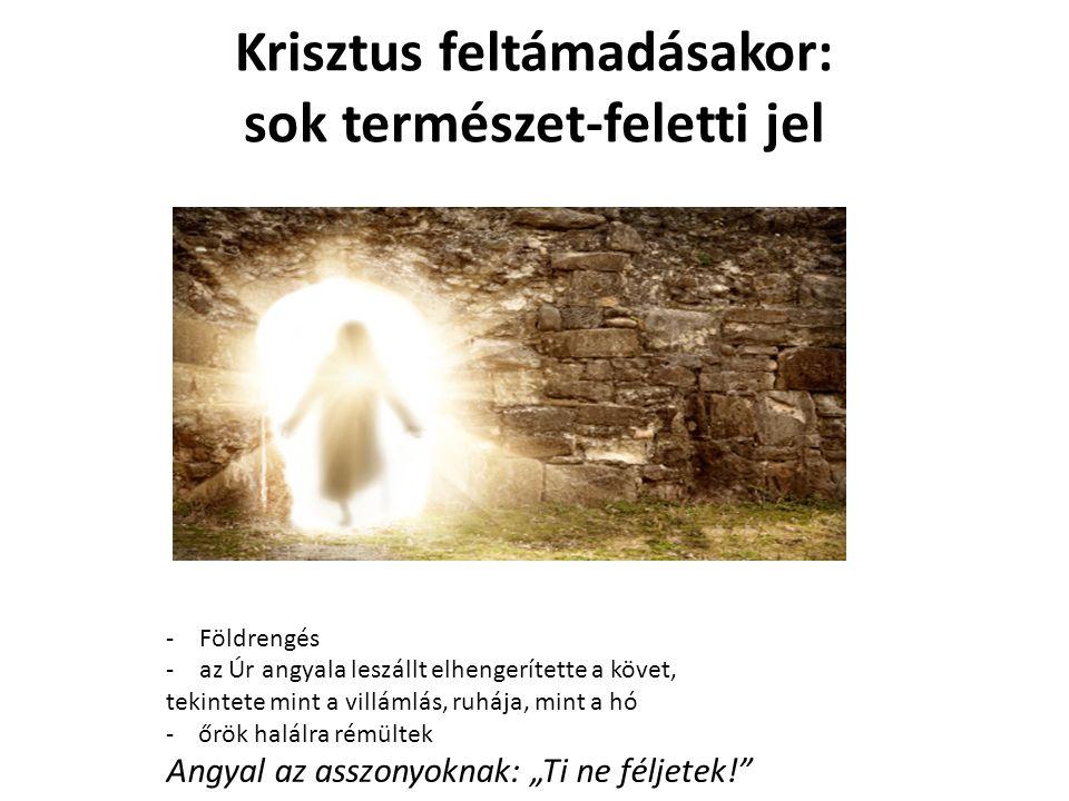 """Krisztus feltámadásakor: sok természet-feletti jel -Földrengés -az Úr angyala leszállt elhengerítette a követ, tekintete mint a villámlás, ruhája, mint a hó - őrök halálra rémültek Angyal az asszonyoknak: """"Ti ne féljetek!"""