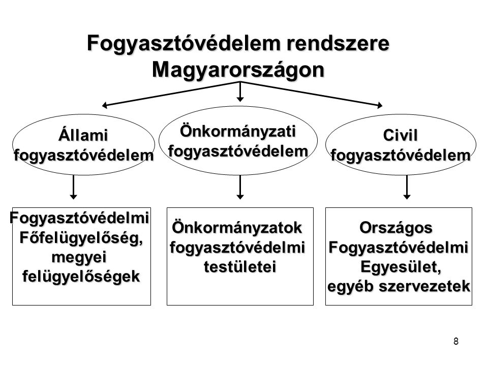 8 Államifogyasztóvédelem Önkormányzatifogyasztóvédelem Civilfogyasztóvédelem FogyasztóvédelmiFőfelügyelőség,megyeifelügyelőségekÖnkormányzatokfogyasztóvédelmitestületeiOrszágosFogyasztóvédelmi Egyesület, Egyesület, egyéb szervezetek Fogyasztóvédelem rendszere Magyarországon
