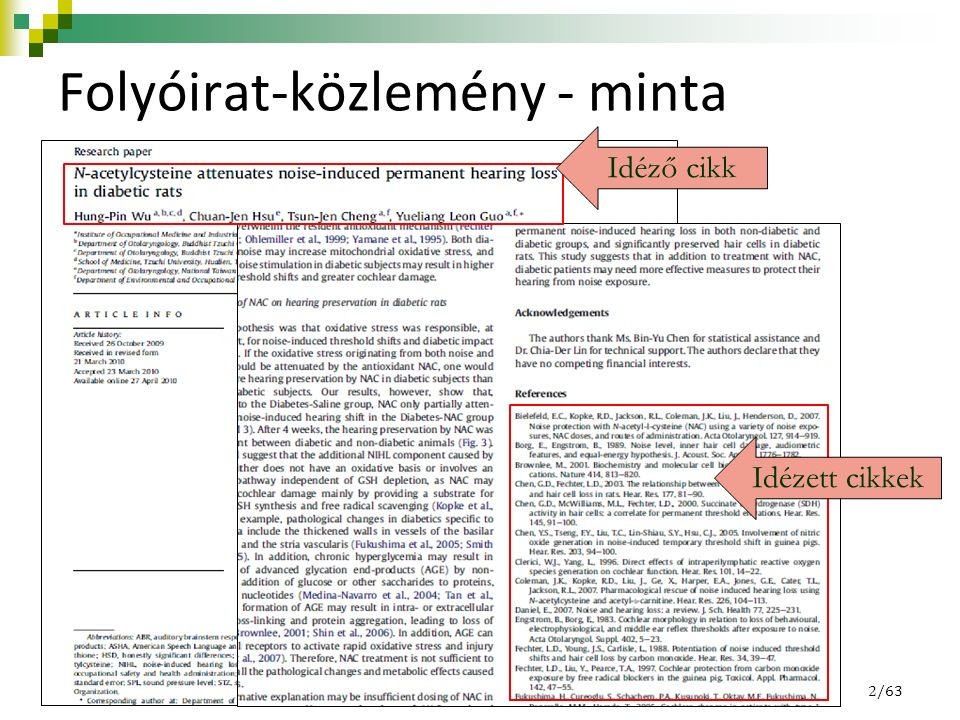 Folyóirat-közlemény - minta Idézett cikkek Idéző cikk 2/63