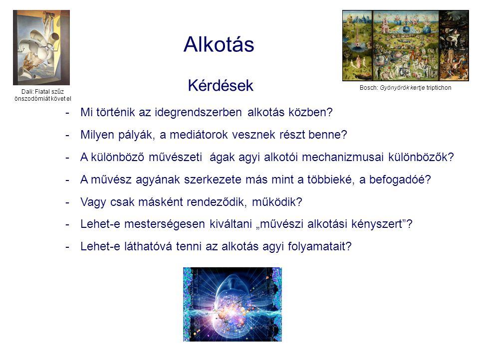 Alkotás Kérdések -Mi történik az idegrendszerben alkotás közben? -Milyen pályák, a mediátorok vesznek részt benne? -A különböző művészeti ágak agyi al