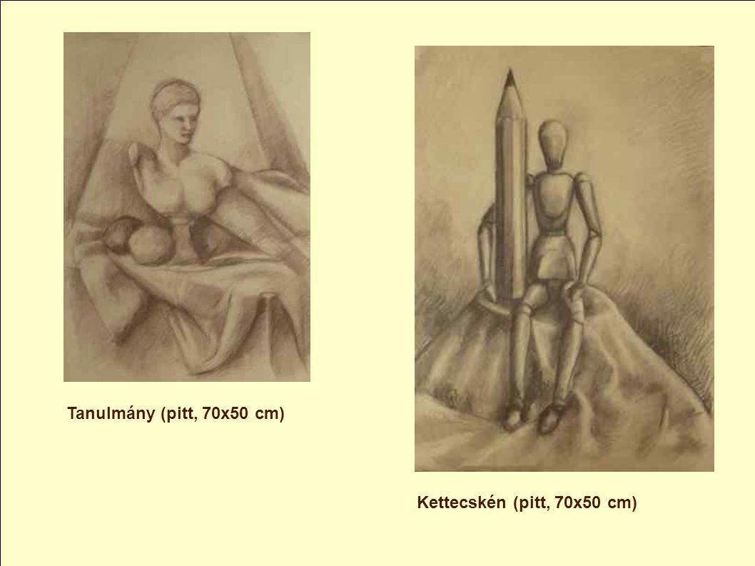 A kiállításon szereplő művek a technikák szerint: Grafit rajz, Grafit rajz, Színes ceruza rajzok, Színes ceruza rajzok, Szénrajzok Szénrajzok Pitt kré