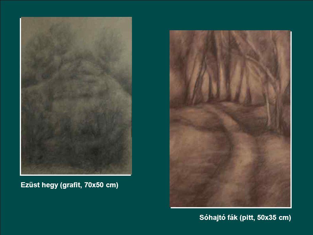 Rohanó fények (szén, 70x50 cm)Ballagó fények (szén, 70x50 cm)
