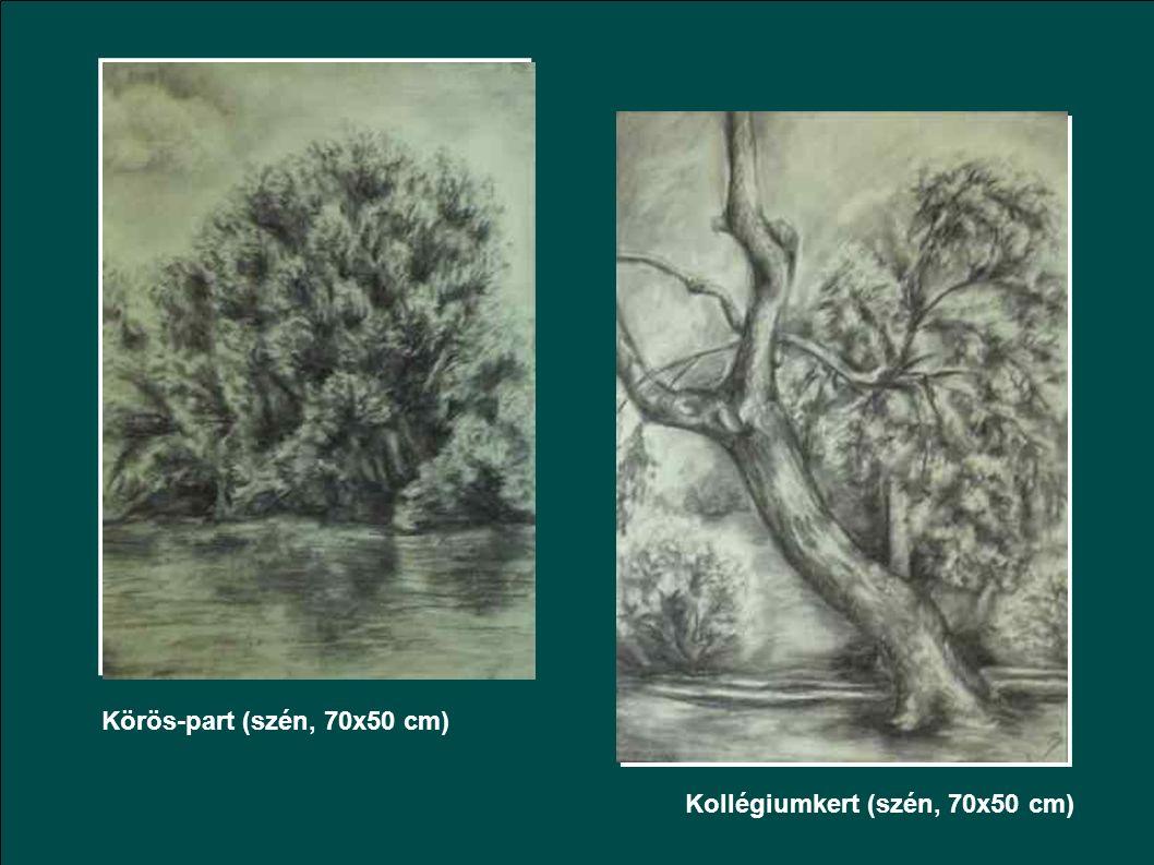 Ezüst hegy (grafit, 70x50 cm) Sóhajtó fák (pitt, 50x35 cm)