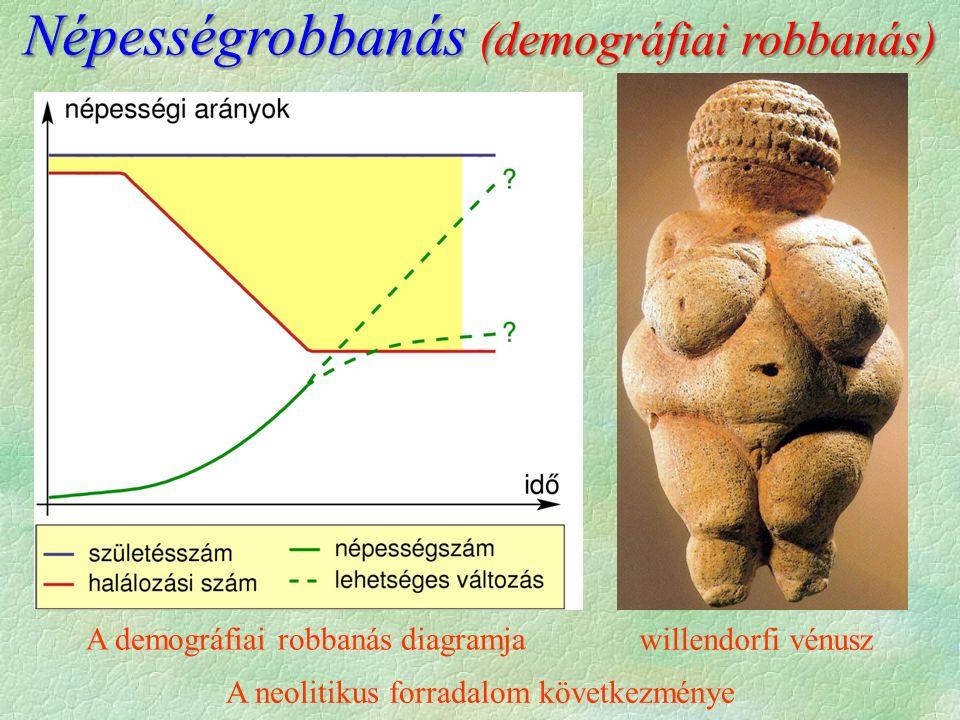 A demográfiai robbanás diagramja willendorfi vénusz A neolitikus forradalom következménye Népességrobbanás (demográfiai robbanás)