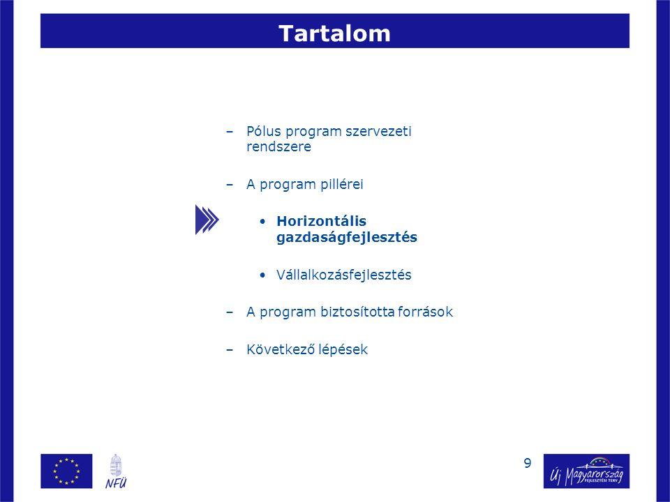 20 –Pólus program szervezeti rendszere –A program pillérei Horizontális gazdaságfejlesztés Vállalkozásfejlesztés –A program biztosította források –Következő lépések Tartalom