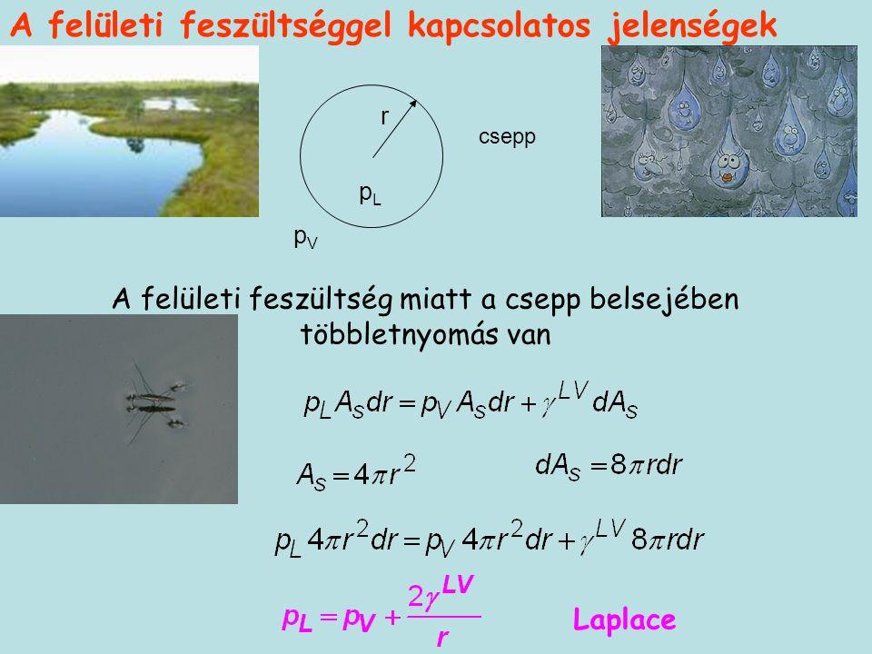r pLpL pVpV csepp A felületi feszültség miatt a csepp belsejében többletnyomás van Laplace A felületi feszültséggel kapcsolatos jelenségek