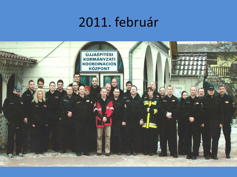 2011. február