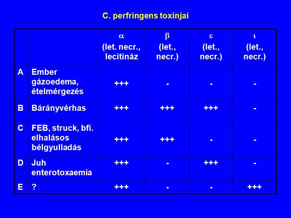 C.perfringens toxinjai  (let.