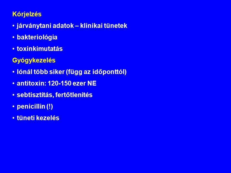 Kórjelzés járványtani adatok – klinikai tünetek bakteriológia toxinkimutatás Gyógykezelés lónál több siker (függ az időponttól) antitoxin: 120-150 ezer NE sebtisztítás, fertőtlenítés penicillin (!) tüneti kezelés