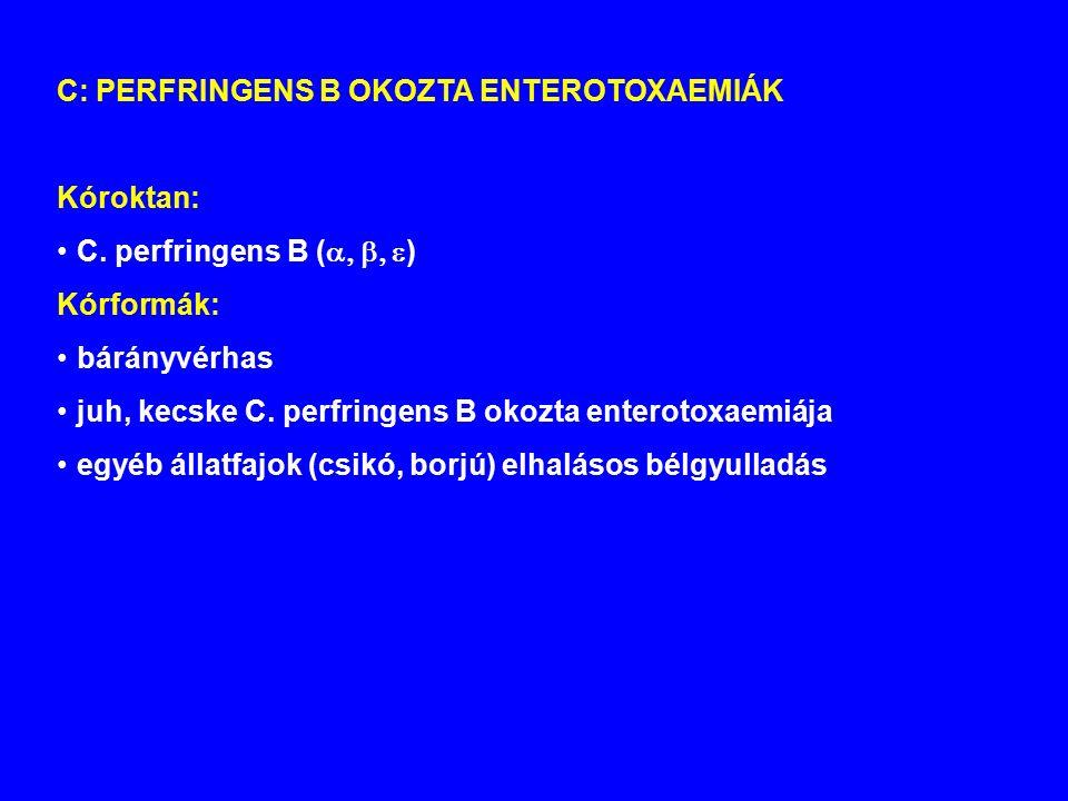 C: PERFRINGENS B OKOZTA ENTEROTOXAEMIÁK Kóroktan: C.