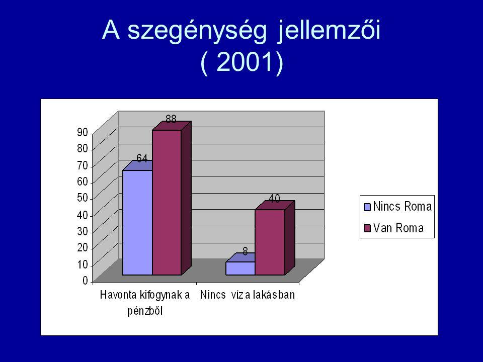 A szegénység jellemzői ( 2001)