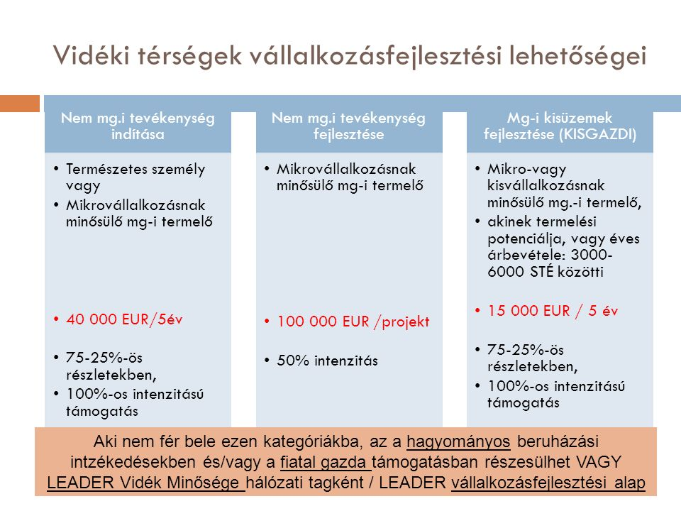 Vidéki térségek vállalkozásfejlesztési lehetőségei Nem mg.i tevékenység indítása Természetes személy vagy Mikrovállalkozásnak minősülő mg-i termelő 40 000 EUR/5év 75-25%-ös részletekben, 100%-os intenzitású támogatás Nem mg.i tevékenység fejlesztése Mikrovállalkozásnak minősülő mg-i termelő 100 000 EUR /projekt 50% intenzitás Mg-i kisüzemek fejlesztése (KISGAZDI) Mikro-vagy kisvállalkozásnak minősülő mg.-i termelő, akinek termelési potenciálja, vagy éves árbevétele: 3000- 6000 STÉ közötti 15 000 EUR / 5 év 75-25%-ös részletekben, 100%-os intenzitású támogatás Aki nem fér bele ezen kategóriákba, az a hagyományos beruházási intzékedésekben és/vagy a fiatal gazda támogatásban részesülhet VAGY LEADER Vidék Minősége hálózati tagként / LEADER vállalkozásfejlesztési alap