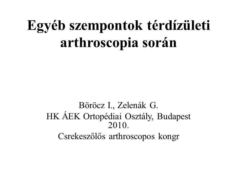 Egyéb szempontok térdízületi arthroscopia során Böröcz I., Zelenák G.