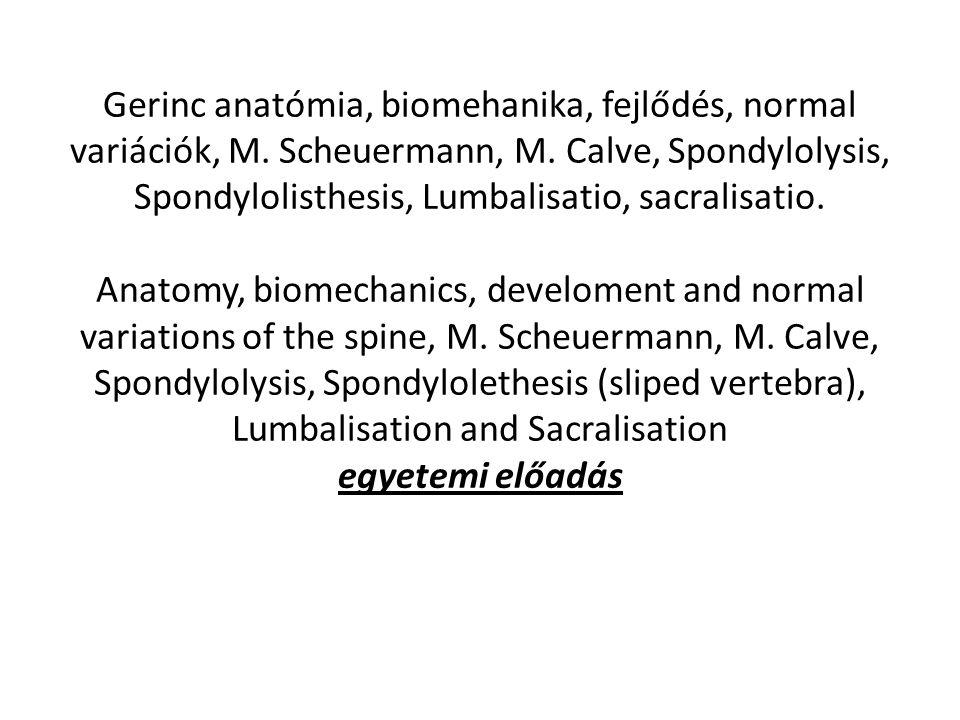 Gerinc anatómia, biomehanika, fejlődés, normal variációk, M.