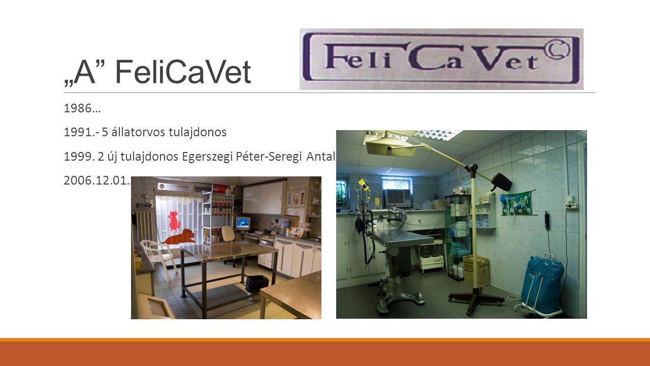 """""""A FeliCaVet 1986… 1991.- 5 állatorvos tulajdonos 1999."""