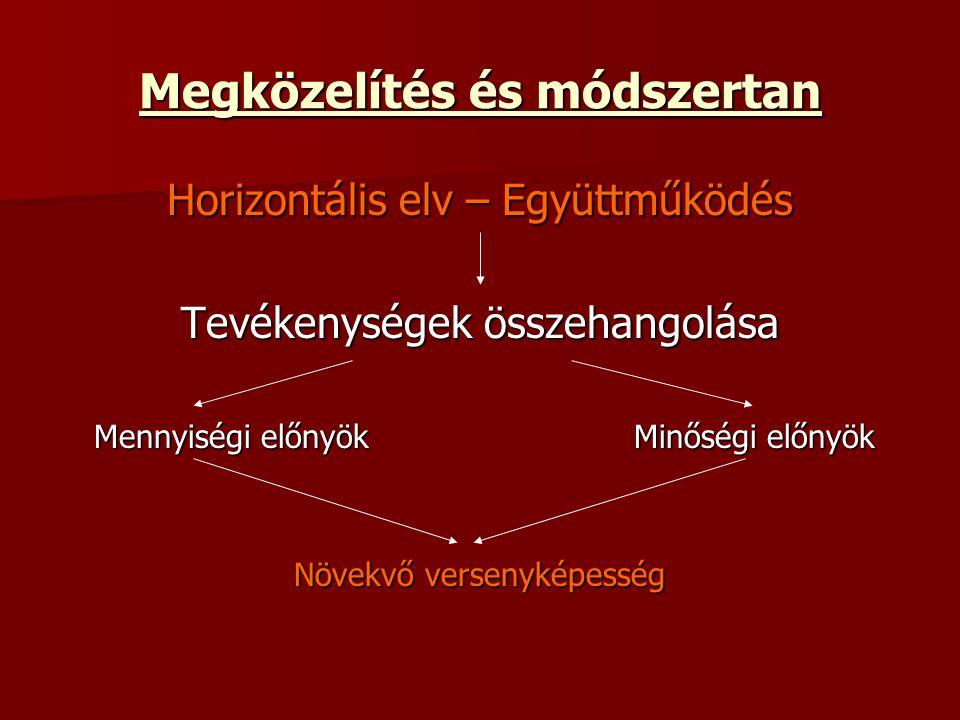 Megközelítés és módszertan Horizontális elv – Együttműködés Tevékenységek összehangolása Mennyiségi előnyökMinőségi előnyök Növekvő versenyképesség