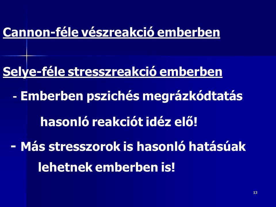 13 Cannon-féle vészreakció emberben Selye-féle stresszreakció emberben - Emberben pszichés megrázkódtatás hasonló reakciót idéz elő! - Más stresszorok