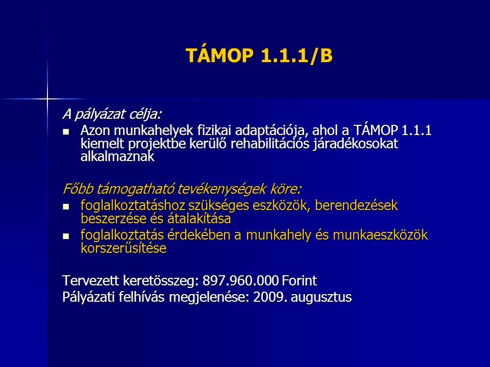 TÁMOP 1.1.1/B A pályázat célja: Azon munkahelyek fizikai adaptációja, ahol a TÁMOP 1.1.1 kiemelt projektbe kerülő rehabilitációs járadékosokat alkalma