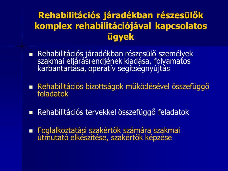 Rehabilitációs járadékban részesülők komplex rehabilitációjával kapcsolatos ügyek Rehabilitációs járadékban részesülő személyek szakmai eljárásrendjének kiadása, folyamatos karbantartása, operatív segítségnyújtás Rehabilitációs bizottságok működésével összefüggő feladatok Rehabilitációs tervekkel összefüggő feladatok Foglalkoztatási szakértők számára szakmai útmutató elkészítése, szakértők képzése