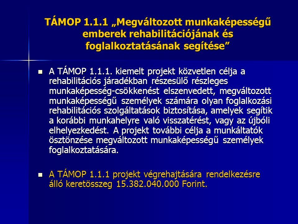 """TÁMOP 1.1.1 """"Megváltozott munkaképességű emberek rehabilitációjának és foglalkoztatásának segítése"""" A TÁMOP 1.1.1. kiemelt projekt közvetlen célja a r"""