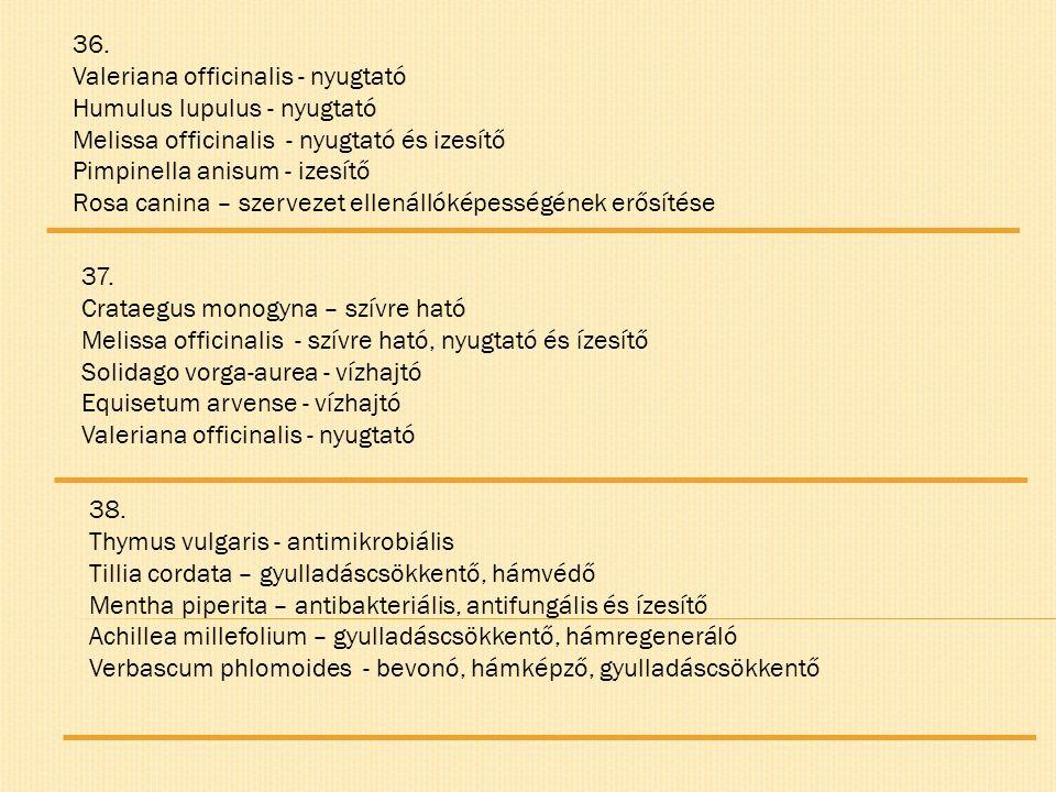 36. Valeriana officinalis - nyugtató Humulus lupulus - nyugtató Melissa officinalis - nyugtató és izesítő Pimpinella anisum - izesítő Rosa canina – sz