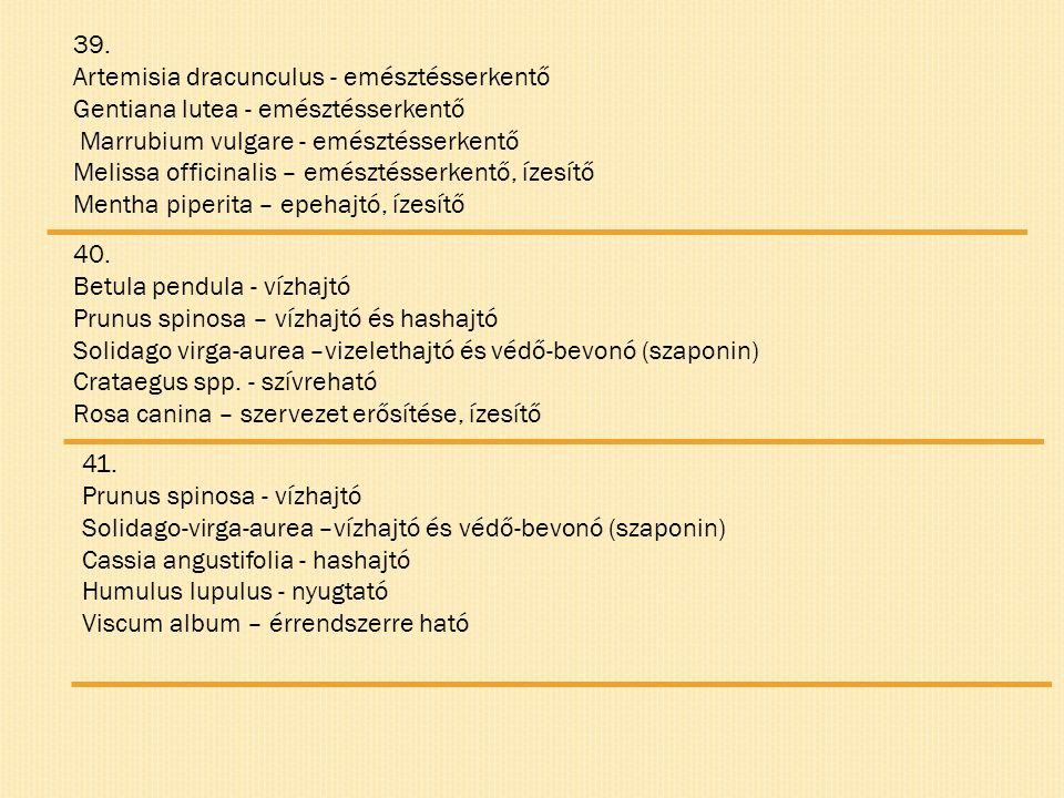 39. Artemisia dracunculus - emésztésserkentő Gentiana lutea - emésztésserkentő Marrubium vulgare - emésztésserkentő Melissa officinalis – emésztésserk