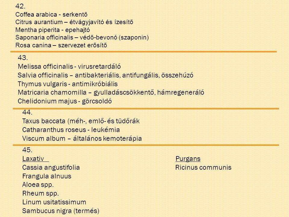 42. Coffea arabica - serkentő Citrus aurantium – étvágyjavító és ízesítő Mentha piperita - epehajtó Saponaria officinalis – védő-bevonó (szaponin) Ros