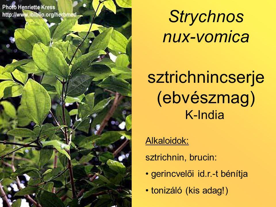 Strychnos nux-vomica sztrichnincserje (ebvészmag) Alkaloidok: sztrichnin, brucin: gerincvelői id.r.-t bénítja tonizáló (kis adag!) K-India