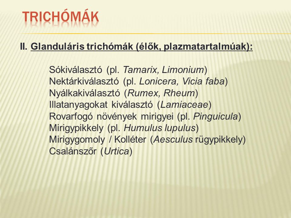 II. Glanduláris trichómák (élők, plazmatartalmúak): Sókiválasztó (pl. Tamarix, Limonium) Nektárkiválasztó (pl. Lonicera, Vicia faba) Nyálkakiválasztó