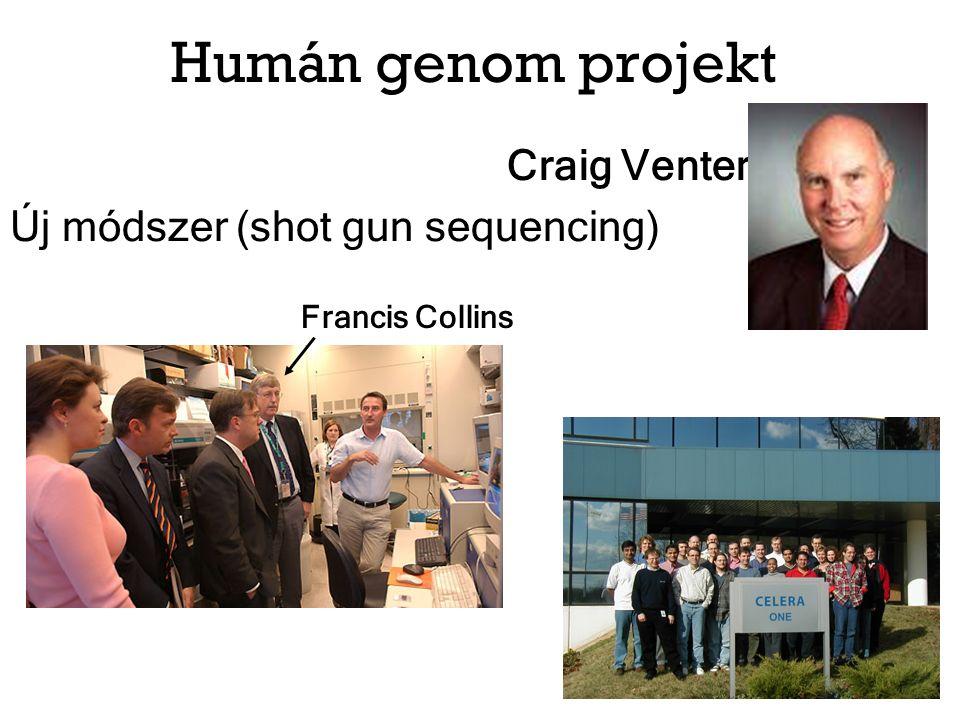 Szalai Csaba és mtsai.: DesensIT projekt: Allergén-specifikus immunterápia vizsgálata (GOP-1.1.1-11-2011-0016)