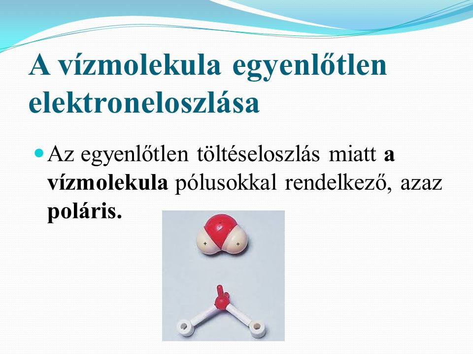 A vízmolekula egyenlőtlen elektroneloszlása Az egyenlőtlen töltéseloszlás miatt a vízmolekula pólusokkal rendelkező, azaz poláris.