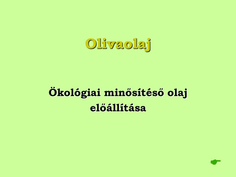 Olivaolaj Ökológiai minősítéső olaj előállítása 