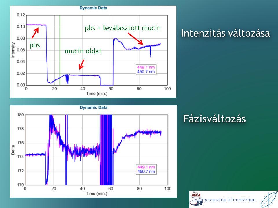 Ellipszometria laboratórium Intenzitás változása pbs + leválasztott mucin mucin oldat pbs FázisváltozásFázisváltozás