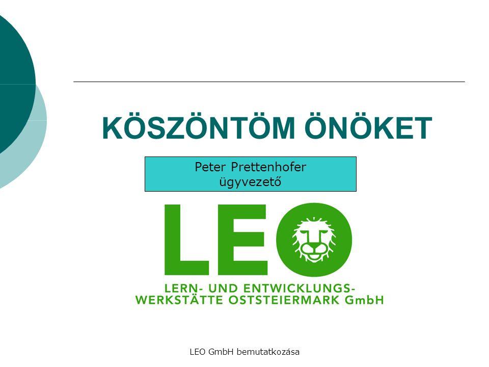 LEO GmbH bemutatkozása KÖSZÖNTÖM ÖNÖKET Peter Prettenhofer ügyvezető