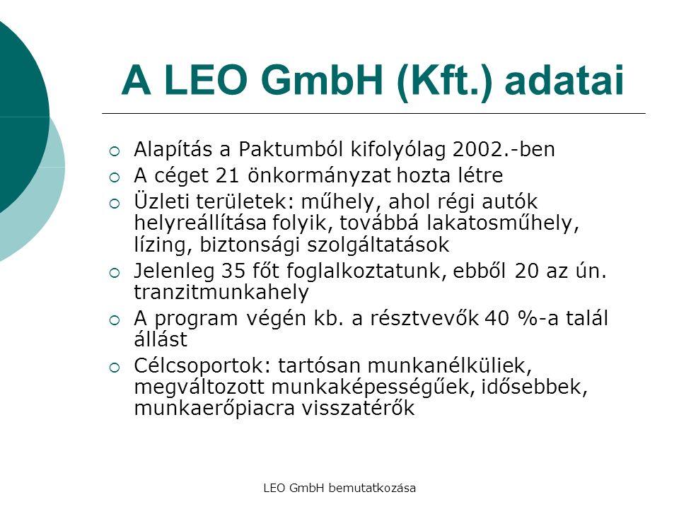 LEO GmbH bemutatkozása A LEO GmbH (Kft.) adatai  Alapítás a Paktumból kifolyólag 2002.-ben  A céget 21 önkormányzat hozta létre  Üzleti területek: műhely, ahol régi autók helyreállítása folyik, továbbá lakatosműhely, lízing, biztonsági szolgáltatások  Jelenleg 35 főt foglalkoztatunk, ebből 20 az ún.