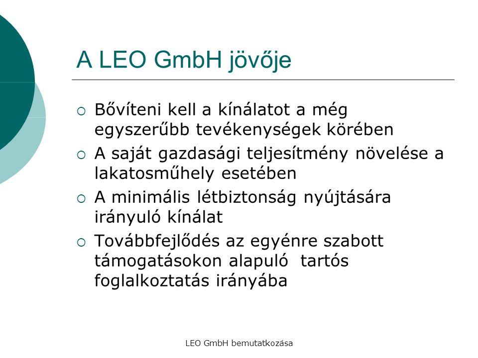 LEO GmbH bemutatkozása A LEO GmbH jövője  Bővíteni kell a kínálatot a még egyszerűbb tevékenységek körében  A saját gazdasági teljesítmény növelése a lakatosműhely esetében  A minimális létbiztonság nyújtására irányuló kínálat  Továbbfejlődés az egyénre szabott támogatásokon alapuló tartós foglalkoztatás irányába
