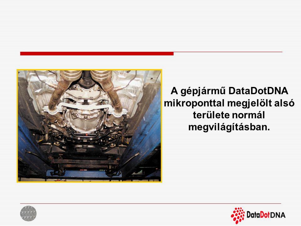 A gépjármű DataDotDNA mikroponttal megjelölt alsó területe normál megvilágításban.