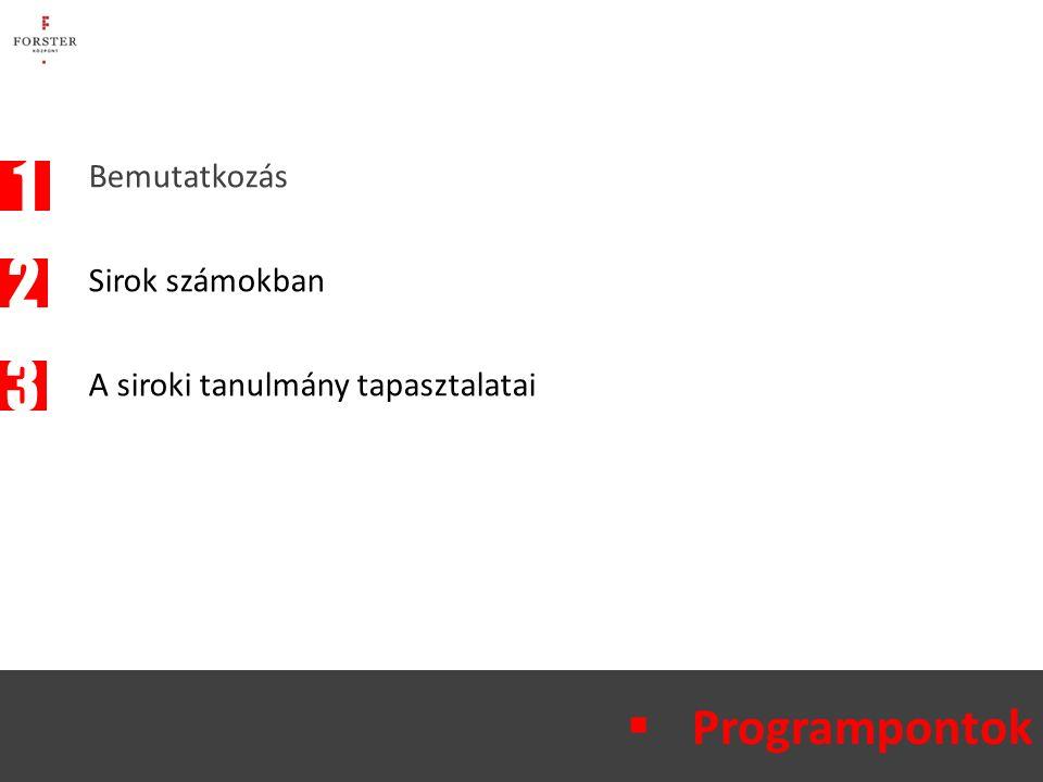 Bemutatkozás Sirok számokban A siroki tanulmány tapasztalatai  Programpontok 2 1 3