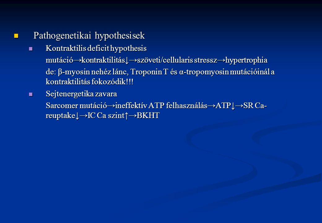 Pathogenetikai hypothesisek Pathogenetikai hypothesisek Kontraktilis deficit hypothesis Kontraktilis deficit hypothesis mutáció→kontraktilitás↓→szövet