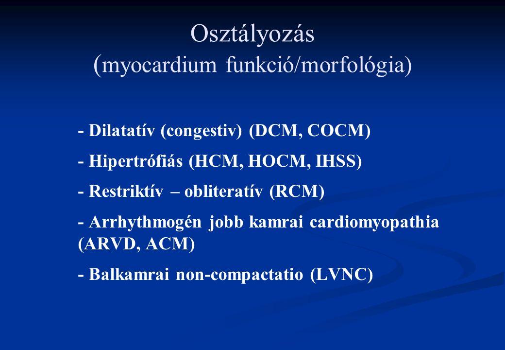 Osztályozás ( myocardium funkció/morfológia) - Dilatatív (congestiv) (DCM, COCM) - Hipertrófiás (HCM, HOCM, IHSS) - Restriktív – obliteratív (RCM) - Arrhythmogén jobb kamrai cardiomyopathia (ARVD, ACM) - Balkamrai non-compactatio (LVNC)