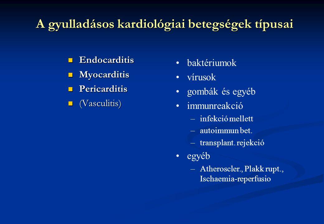 A gyulladásos kardiológiai betegségek típusai Endocarditis Endocarditis Myocarditis Myocarditis Pericarditis Pericarditis (Vasculitis) (Vasculitis) ba