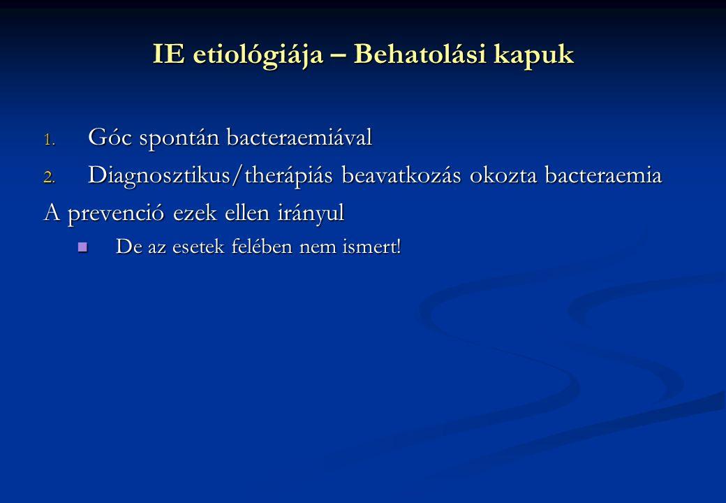 1. Góc spontán bacteraemiával 2. Diagnosztikus/therápiás beavatkozás okozta bacteraemia A prevenció ezek ellen irányul De az esetek felében nem ismert