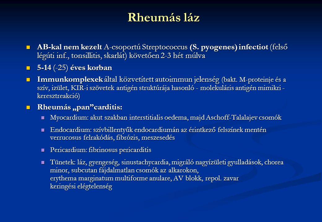 Rheumás láz AB-kal nem kezelt A-csoportú Streptococcus (S. pyogenes) infectiot (felső légúti inf., tonsillitis, skarlát) követően 2-3 hét múlva AB-kal