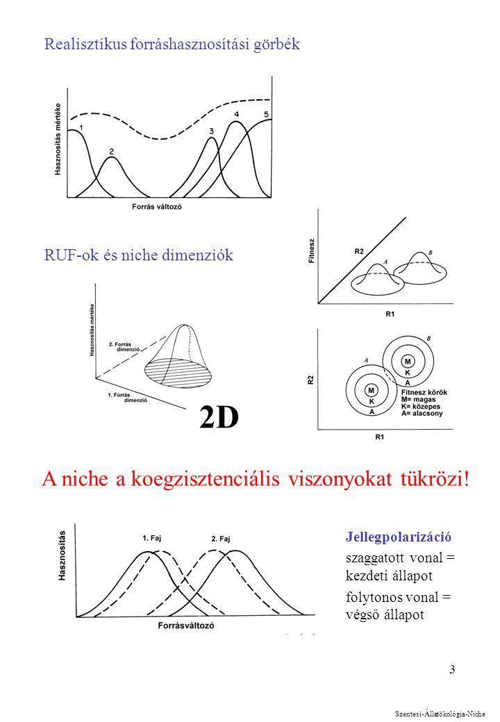 3 Realisztikus forráshasznosítási görbék RUF-ok és niche dimenziók 2D Szentesi-Állatökológia-Niche A niche a koegzisztenciális viszonyokat tükrözi.