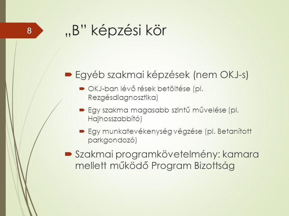 """""""B"""" képzési kör  Egyéb szakmai képzések (nem OKJ-s)  OKJ-ban lévő rések betöltése (pl. Rezgésdiagnosztika)  Egy szakma magasabb szintű művelése (pl"""