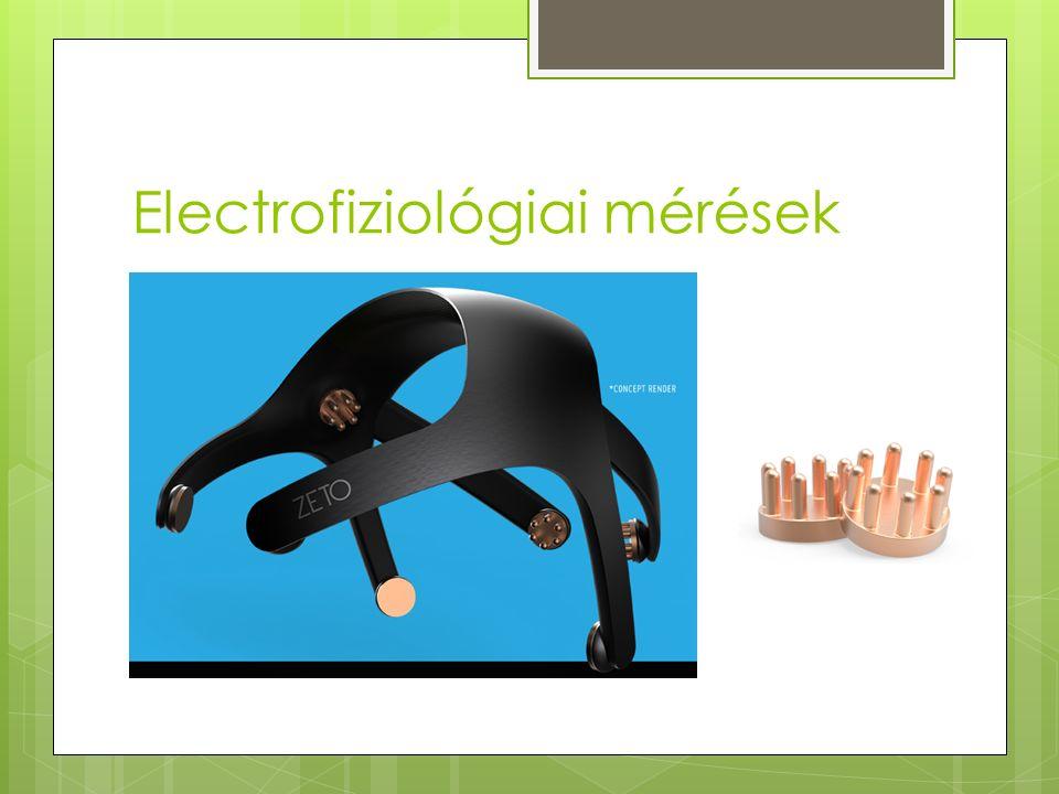 Electrofiziológiai mérések