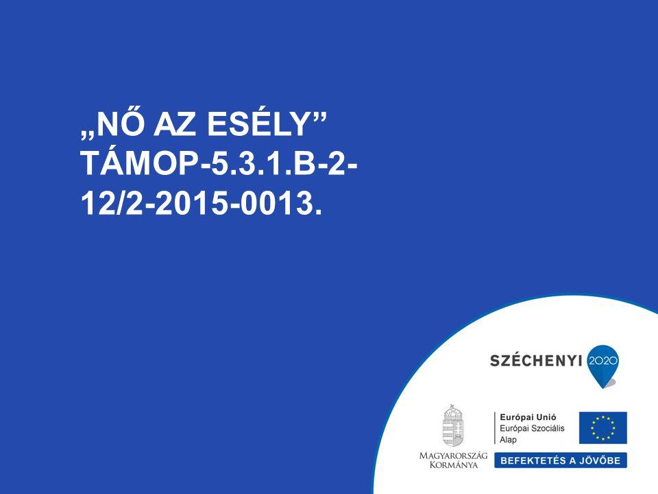 """""""NŐ AZ ESÉLY TÁMOP-5.3.1.B-2- 12/2-2015-0013."""