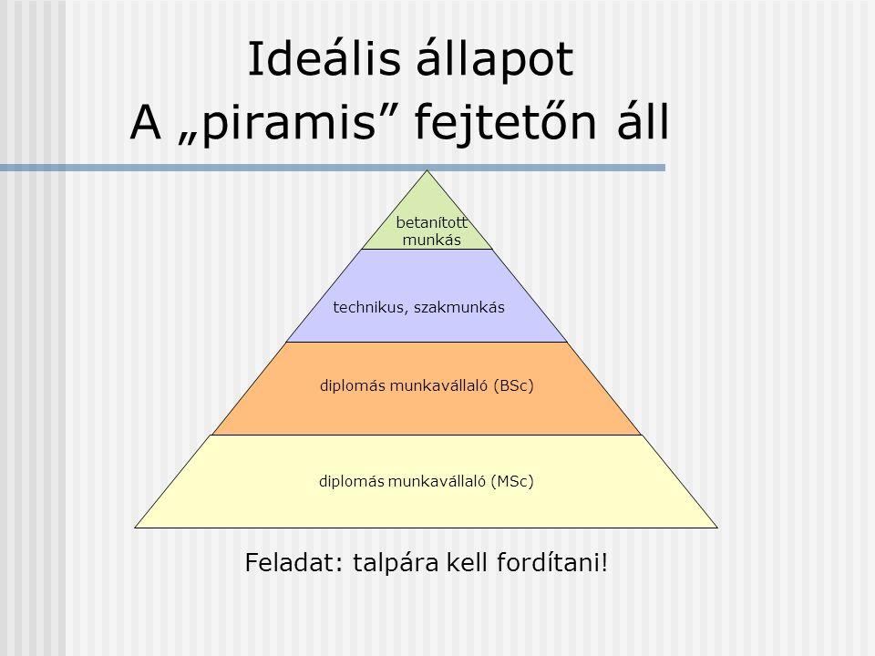 """A """"piramis fejtetőn áll technikus, szakmunkás betanított munkás diplomás munkavállaló (BSc) diplomás munkavállaló (MSc) Feladat: talpára kell fordítani."""