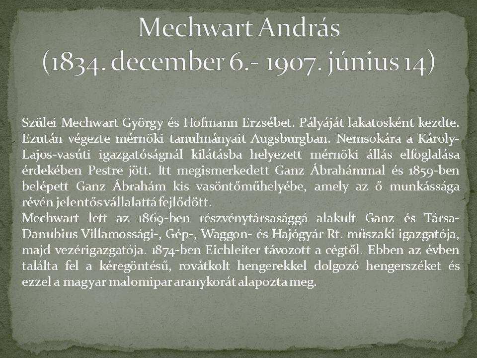 Szülei Mechwart György és Hofmann Erzsébet. Pályáját lakatosként kezdte.